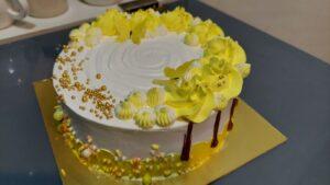 Read more about the article चविष्ट आईसक्रिम फालुदा केक तयार करा अगदी कमी साहित्यासह !