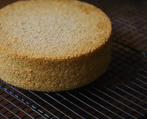vanilla sponge2